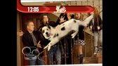 Pes a jeho blog S01E01 Moje nová rodina (Stan of the House) avi