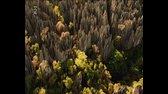 Zázračná planeta Domov aneb Kam směřuje naše cesta dokument Tvrip avi